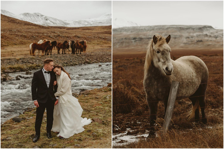 Sesja ślubna na Islandii 14