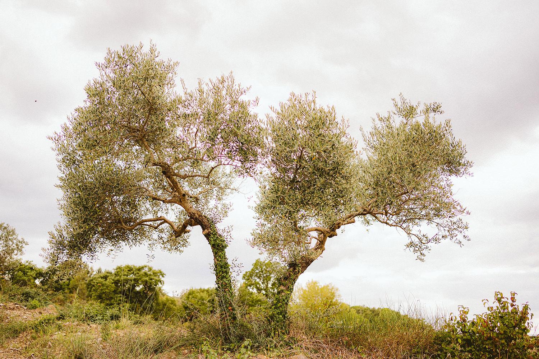 Ślub we Włoszech 2
